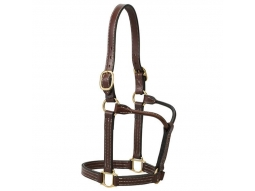 Premium Triple Stitched Stallion Head Collar