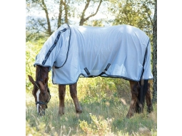 Amigo Bug Fly Rug