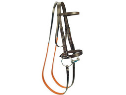 Gibson Exercise Bridle (Gold Range)