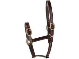 Leather Headcollar (Silver Range)